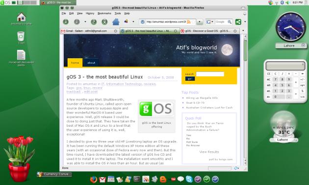 My gOS desktop